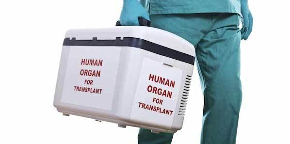 Study: Liver Transplant Patients Seek Closer Involvement