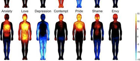 Our Emotional Map: The Body Atlas Revealed