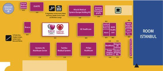 EuroEcho-Imaging 2013: No Heart Disease Diagnosis and Treatment Without Imaging