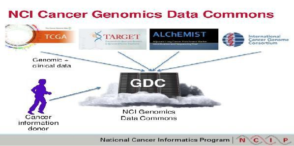 University of Chicago to Establish Genomic Data Commons