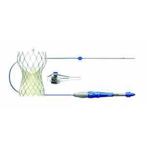 The Medtronic CoreValve® Evolut® R Transcatheter Valve.