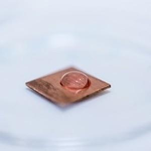 Copper Destroys MRSA in Touch Contamination