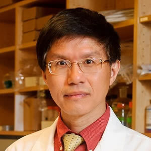 Zezong Gu, Ph.D., Associate professor of pathology and anatomical sciences at the MU School of Medicine and lead author of the study.