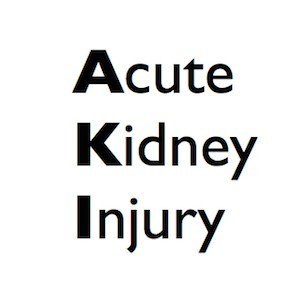 Acute Kidney Injury Recommendations Published