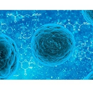 MRI-Guided Method Improves Stem Cell Delivery Efficacy