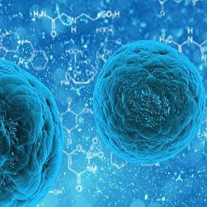 Cardiac Stem Cells From Heart Disease Patients May Be Harmful