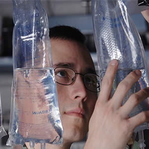Fluid Challenge: Its Impact on Fluid Responsiveness