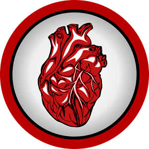 New marker helps identify heart attack patients most at risk