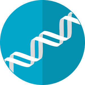 Tech and the genome sequence: the story so far