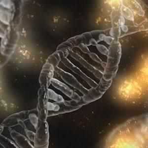 Blockchain genomics marketplace