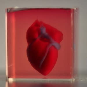 A 3D-printed, small-scaled human heart engineered from the patient's own materials and cells.