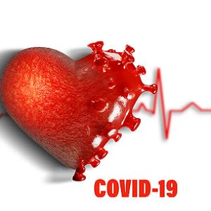Ageing Heart Cells Increase Susceptibility of Older Patients to Severe COVID-19