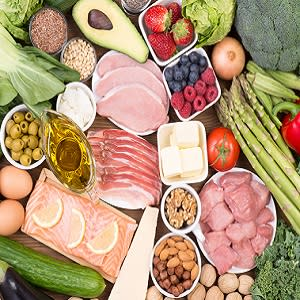Comparing Low-Fat, Plant-Based Diet to Low-Carb, Animal-Based Diet