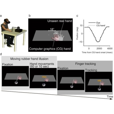 VR for Better Motor Control