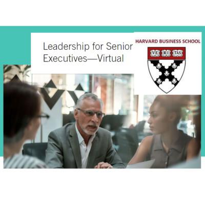 Leadership for Senior Executives