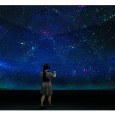 VR for Rare Diseases Identification