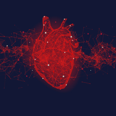 AI使用心电图和x线结果来诊断心律失常