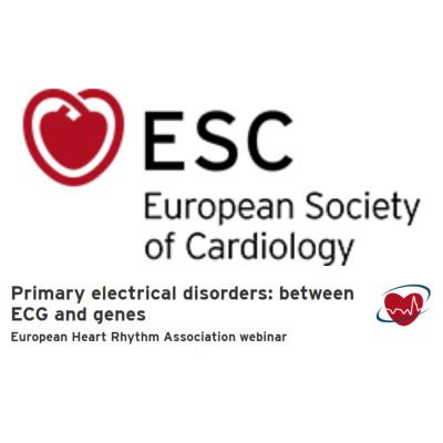 Primary electrical disorders: between ECG and genes