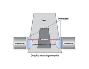 Ultrasound bone densitometer / for bone densitometry OsteoPro BM Tech