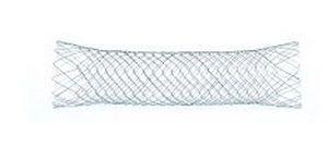 Colorectal stent BONASTENT EndoChoice