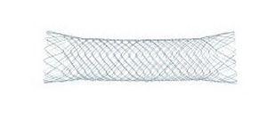 Duodenal stent BONASTENT® EndoChoice