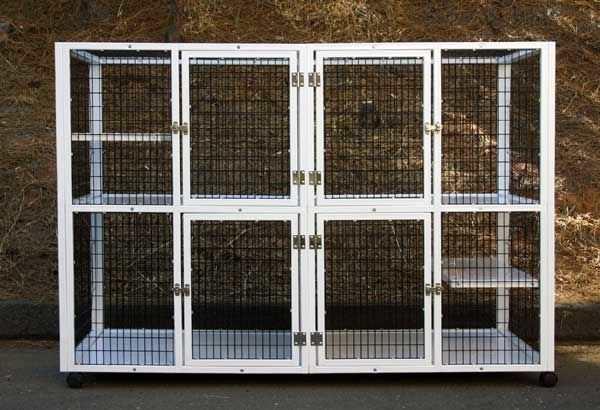 4-unit veterinary cage / 2-shelf S550 CD&E Enterprises