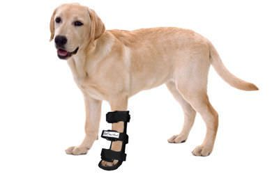 Ankle veterinary splint / dog Dog Splint Walkin' Wheels