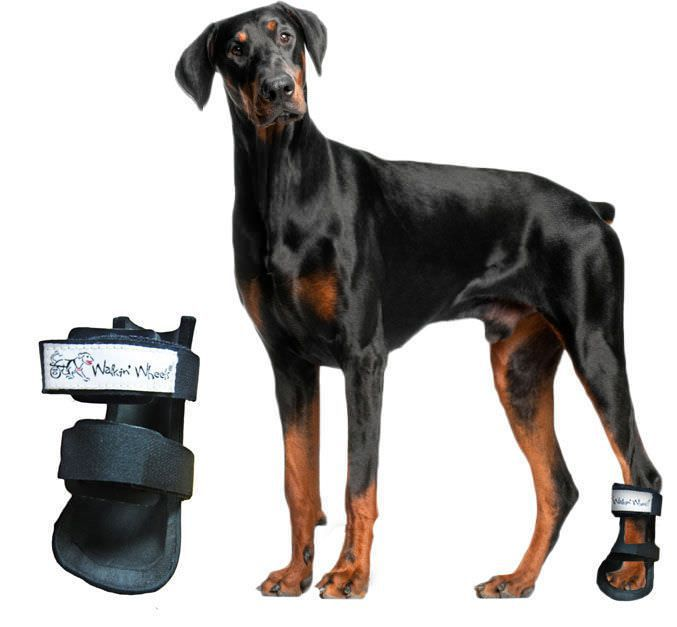 Dog veterinary splint Bootie Splint Walkin' Wheels