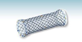 Tracheal stent HANAROSTENT® M.I Tech