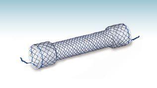 Esophageal stent HANAROSTENT® CCC M.I Tech