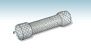 Esophageal stent HANAROSTENT® Begin CCC M.I Tech