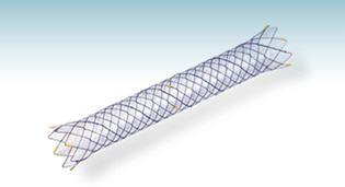 Biliary stent HANAROSTENT® CCC M.I Tech