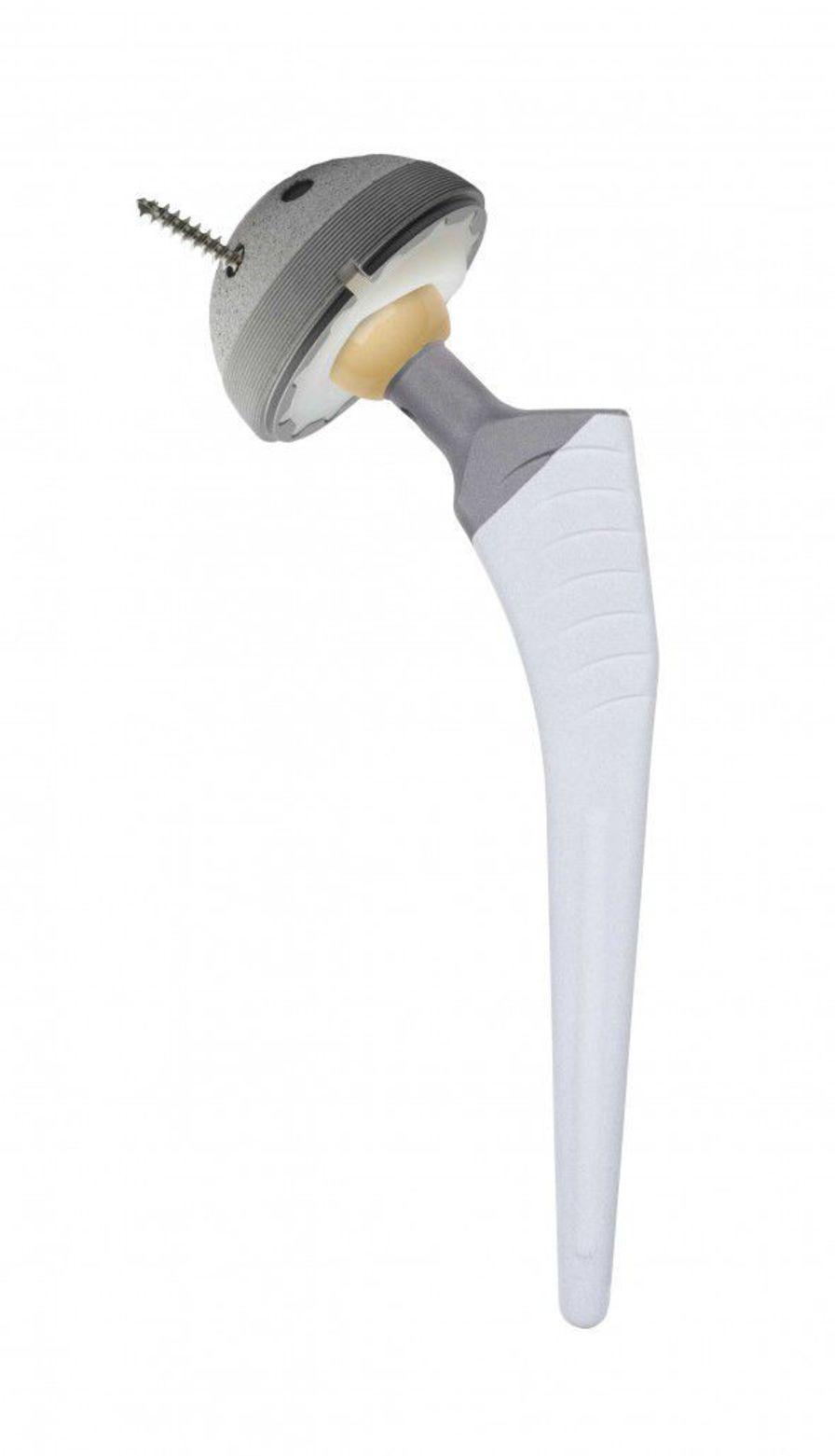 Traditional femoral stem / cementless KAREY HA® Surgival