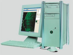 Ultrasound system / on platform, fixed / for skin ultrasound imaging DUB®profi D4W-3D taberna pro medicum