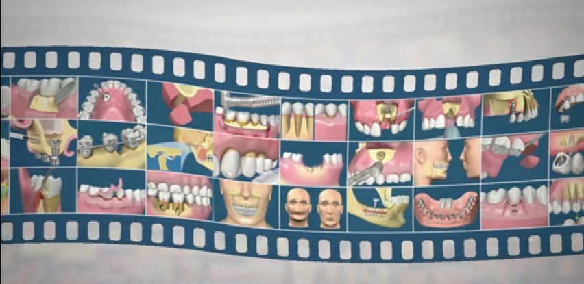 Training software / medical / dental XLTEACH XLDent