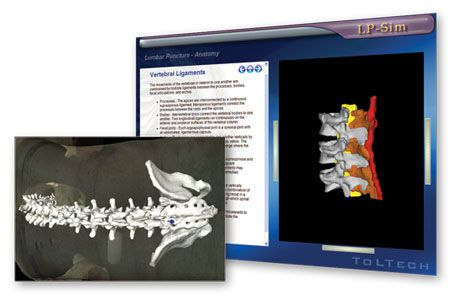 Multiparametric training simulator / venous vascular access / for lumbar puncture OPUS™ TolTech