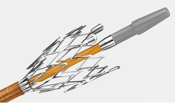 Peripheral stent / nitinol / self-expanding / with applicator DISCOVERY™ 5F Endocor