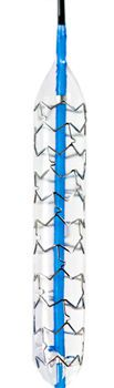Coronary stent / stainless steel / with applicator SPIRIT™ Endocor