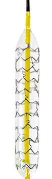 Coronary stent GHOST™ Endocor