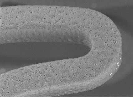 Coronary stent / cobalt chromium eucaLimus Eucatech