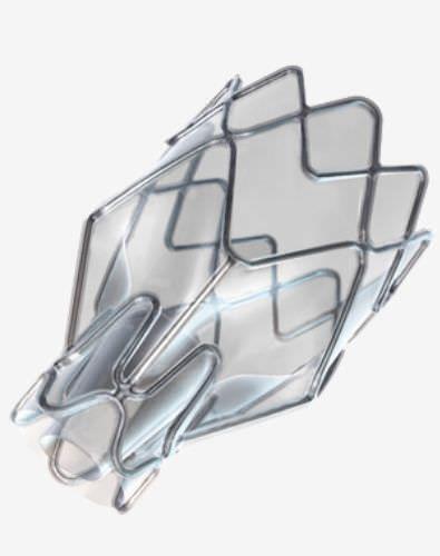 Endobronchial valve bioprosthesis ZEPHYR® pulmonX