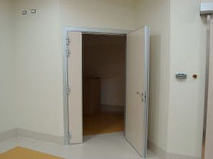Swinging door / radiation shielding / hardwood Cablas
