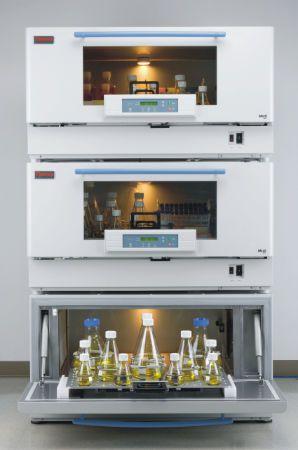 Laboratory incubator shaker -5 °C ... +60 °C, 25 - 400 rpm | MaxQ™ 8000 Thermo Scientific