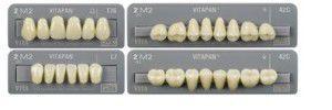 Acrylic resin dental prosthesis VITAPAN® VITA Zahnfabrik H. Rauter GmbH & Co.KG