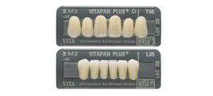Acrylic resin dental prosthesis VITAPAN® PLUS VITA Zahnfabrik H. Rauter GmbH & Co.KG