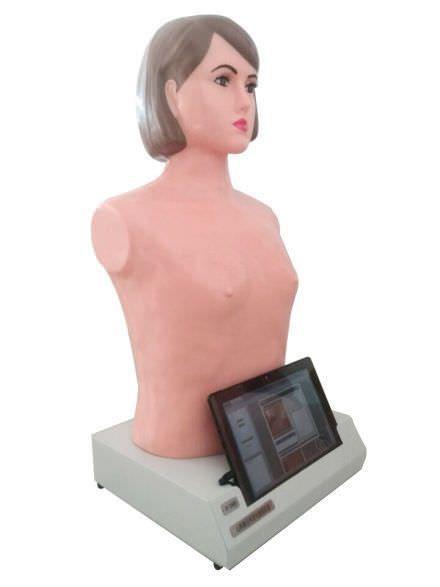Palpation training manikin / auscultation / adult / torso UN/XFM YUAN TECHNOLOGY LIMITED