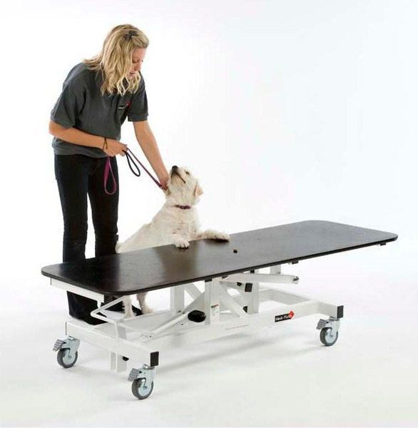 Veterinary examination table / electrical / lifting Medi-Plinth
