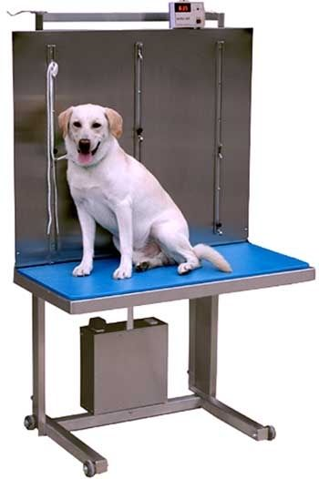 Veterinary examination table / lifting / fixed / with scale ELSAM III Technidyne