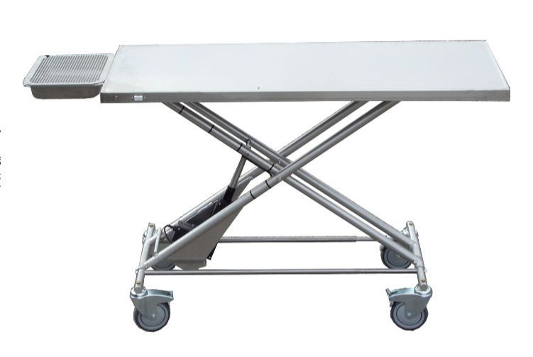 Electric veterinary transport table with dental tray Technidyne