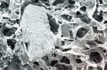 Synthetic bone substitute / rigid SmartBone SmArtSpine